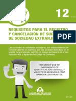 Guía 12 Registro Sucursal Extranjera