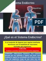 14 Sistema Endócrino.pptx