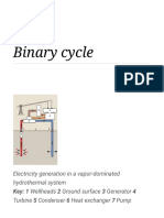 Binary Cycle