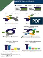 Infografía Ecuador if Jun-2019