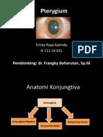 Emita Raya - Pterigium