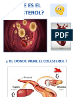 Disertacion Colesterol Ppt Tomy