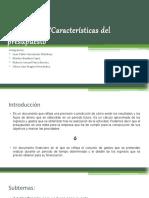 Presupuesto Contabilidad presentacion