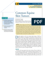 Common Equine Skin Tumors