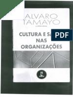 Cultura e Saude Nas Organizcoes.alvaro Tamayo