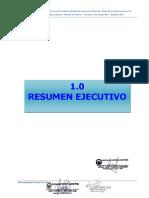 resumenejecutivo_proyecto