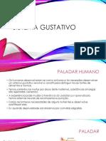 Sistema Gustativo.pptx