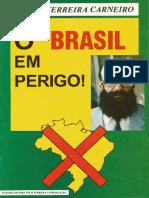 CARNEIRO, Eneas. O Brasil Em Perigo