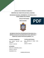 Informe Corregido - Luis Luque Ejemplo
