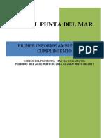 Formato Mínimo Iac-2019 (1)