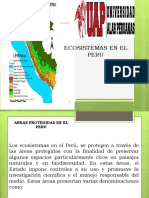 Ecosistemas en El Peru