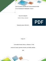 Paso 3 – Desarrollo de La Problematica Grupo 22 (2)