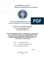 Proyecto de Tesis Carlos Junior Perez Davila