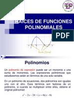 7. Raices Polinomiales