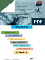 Estrptomyces Diapositivas NUEVA