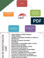 Lineas de Investigacion - USAT.pdf
