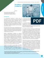 revista_salud_ambiental_articulo_principal.pdf