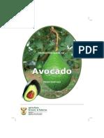 0-Avocado_prod.pdf