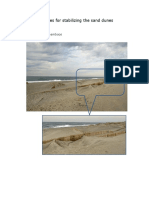 Sand Dunes - Protection Measures