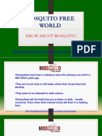 Know About Mosquito