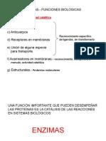 EstructuraEnzimas_33012