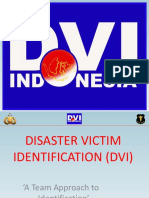 01. DVI Overview_id