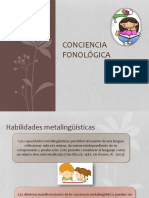 256264893 Conciencia Fonologica A
