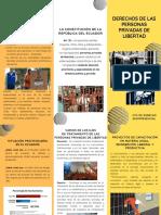 DERECHOS DE LAS PERSONAS PRIVADAS DE LIBERTAD.pdf