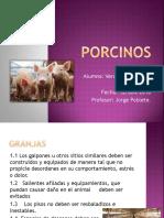 Trabajo de  Buenas Practicas Ganaderas (Porcinos).pptx