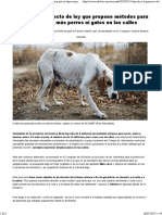 Proyecto de ley mascotas