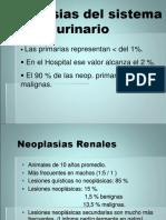 neoplasias urinarias