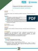 Programa, Modalidad de Cursado y Certificación
