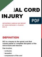 Spinal Cord Injury POC