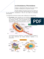 Lec.Organismos Unicelulares y Pluricelulares.doc