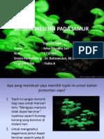 bioluminesensi.pptx