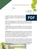 Taller_conformando_comite_CAE.pdf