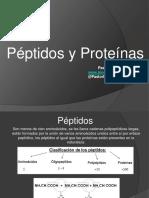 Péptidos y Proteínas
