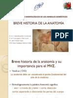 Historia Anatomia 2015
