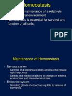 homeostatsis and feedback  1