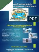 Presentación QUIMICA.pptx