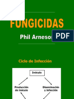 Fungi Cid As Arneson October 2007
