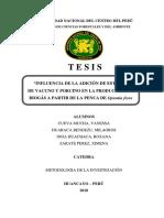 METODOLOGIA-FINAL.docx