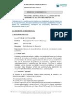 QUINUAPATA V2.docx