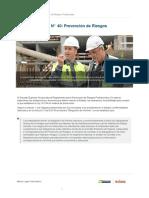 decreto_supremo_n_40_prevencion_de_riesgos_profesionales-5cc0ce1c05003.pdf