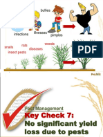 3.8  Pest Management_Key Check 7.ppt
