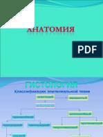 анатомияt.ppt