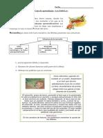 Guia fábula 3°.pdf