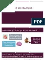 Lo Involuntario & Lo Voluntario (Ética, III)
