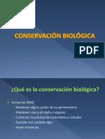 1. Que es biologia de la conservacion BSc.pdf