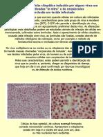 Efeito citopático
